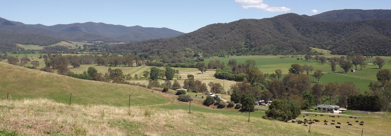Rankin family paddock landscape
